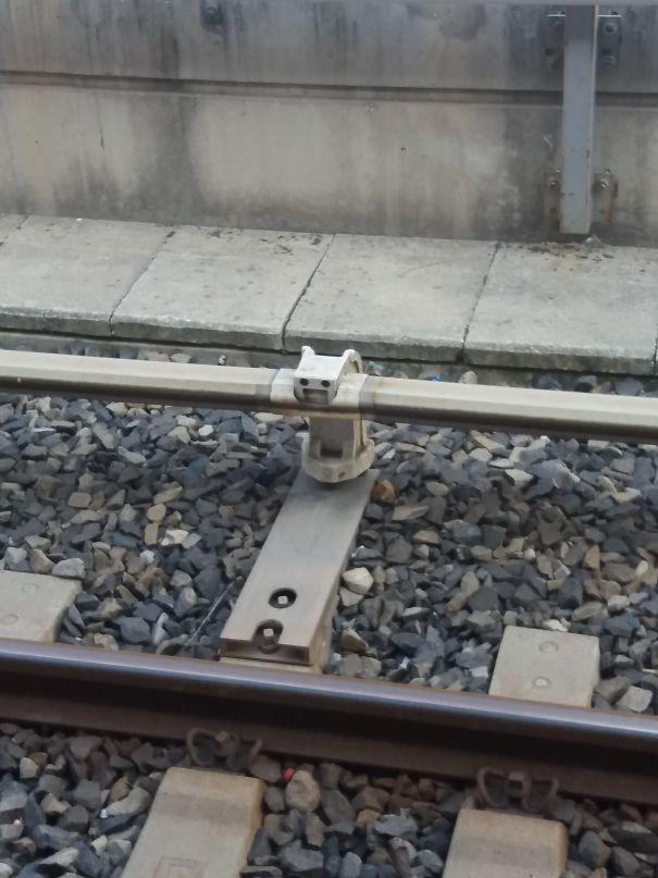 اتین بخش از ریل آهن از این که در این قسمت نشسته خوشحال به نظر می رسد
