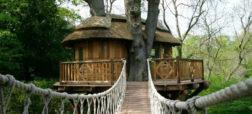 ۲۰ خانه درختی جالب و شگفت انگیز که دیدنشان شما را حیرت زده می کند