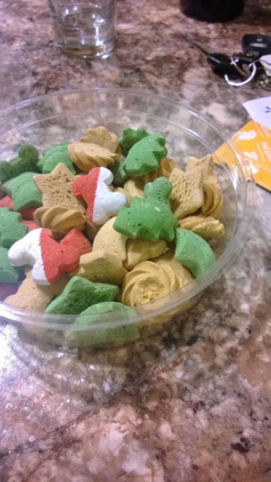 این غذای سگ است و نامزدم تصور کرده شیرینی های عید است و مشغول خوردن آن ها بوده