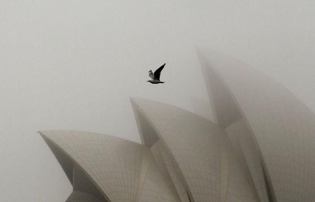 سالن اپرای شهر سیدنی را باید سفیر معماری استرالیایی به شمار آورد که یکی زیباترین ساختمان های دنیا به شمار می رود.