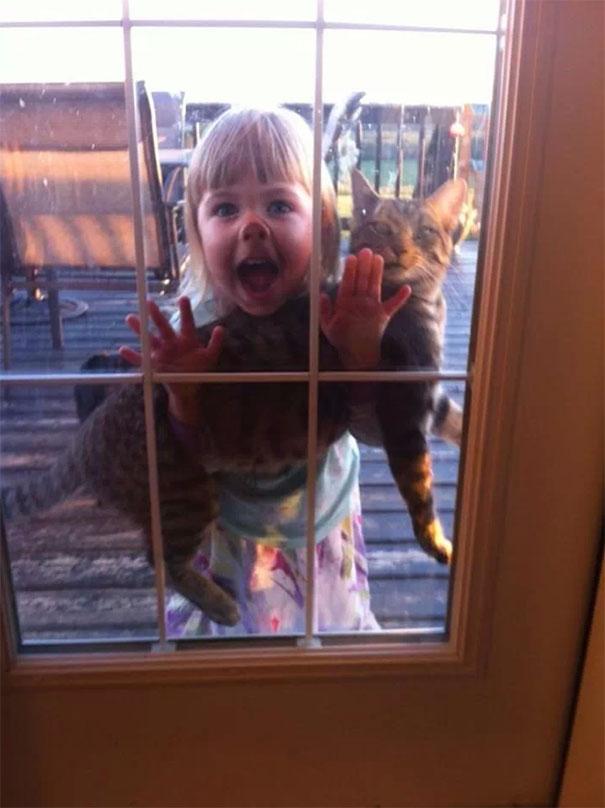 حال و روز گربه را از روی چهره او می توان به خوبی درک کرد.