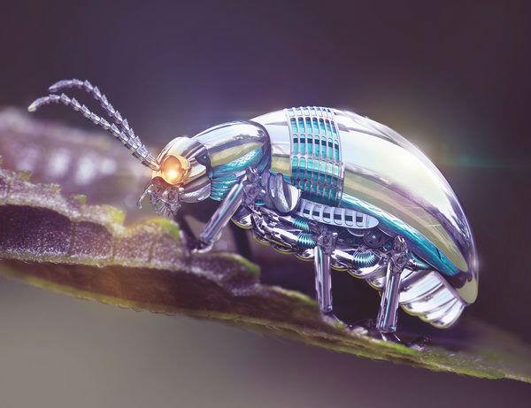 Robotic-Beetle-w700