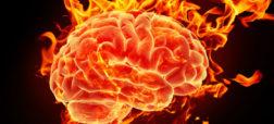 brain_on_fire-w700