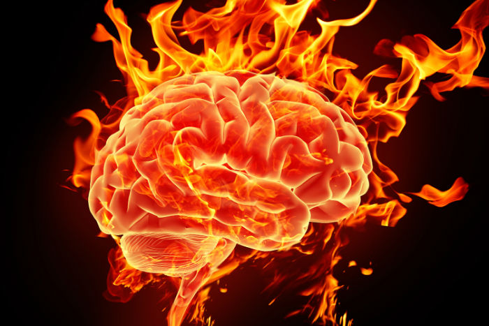 ۲۱ حقیقت جالب و باورنکردنی در مورد مغز انسان که شما را شگفت زده می کنند