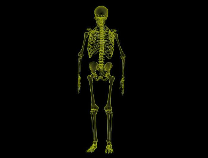 ۱۰ واقعیت جالب و شگفت انگیز در مورد اسکلت بندی بدن انسان