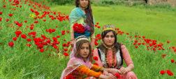 سفر به کردستان؛ از «سارال» تا «پالنگان»