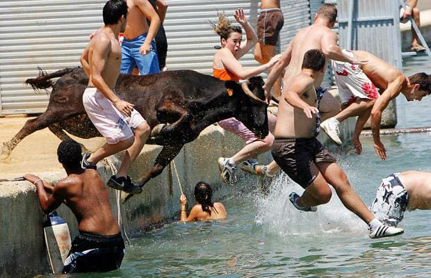 people-bulls-water_1437818i-w700