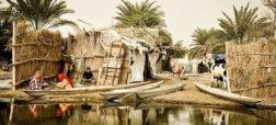 گشتی در تالاب بین المللی شادگان؛ ونیز ایران