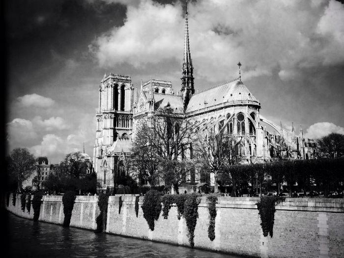 they-settled-the-le-de-la-cit-now-the-site-of-notre-dame-w700