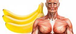 اگر هر روز دو عدد موز بخورید، چه اتفاقی در بدن شما رخ می دهد؟