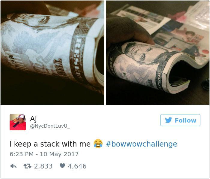 من یک دسته اسکناس همراهم دارم. #BowWowChallenge