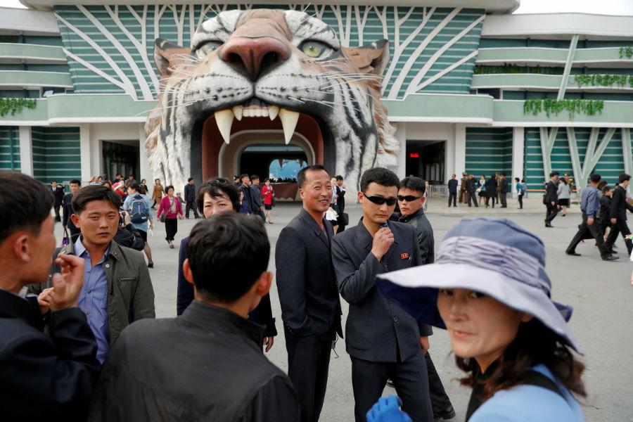 باغ وحش مرکزی پیونگ یانگ در سال 1959 میلادی تاسیس شد. تنها حیوانی که در معرض نمایش قرار داشت، 50 گورکن بوده است.