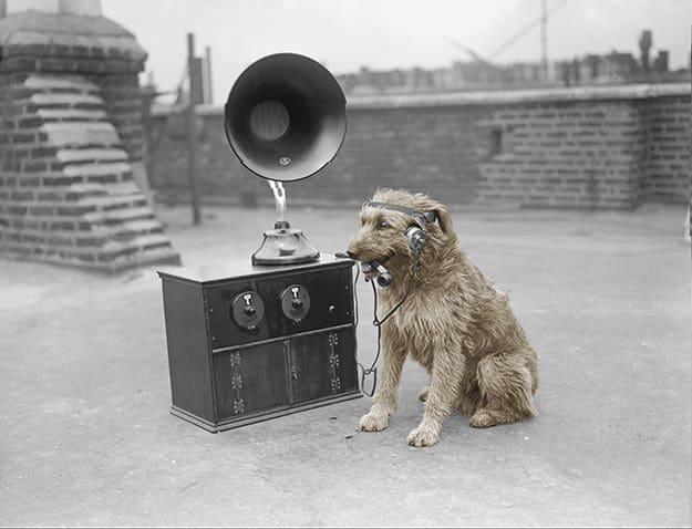 در تاریخ یاد شده، از شدت بی خبری در تمام روز موسیقی و اپرا ز شبکه های خبری پخش شد.