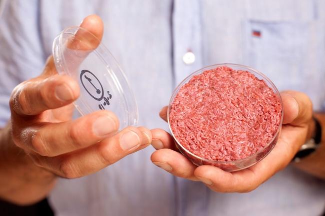 در سال 2013 نخستین برگر های-تِک با هزینه ای حدود 325 هزار دلار تولید شد. گوشت این برگر در محیط آزمایشگاهی و با بهره گیری از بافت های گوشت گاو تهیه شده است و برای تهیه آن دیگر لازم به کشتن حیوانات نخواهد بود. از آن جا که روند تولید این گوشت کشت داده شده بسیار بالاست، دانشمندان به دنبال یافتن روشی نوین و گزینه های جایگزین برای کاهش هزنیه ها هستند.