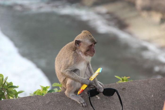 Bali-0691-960x640-w700