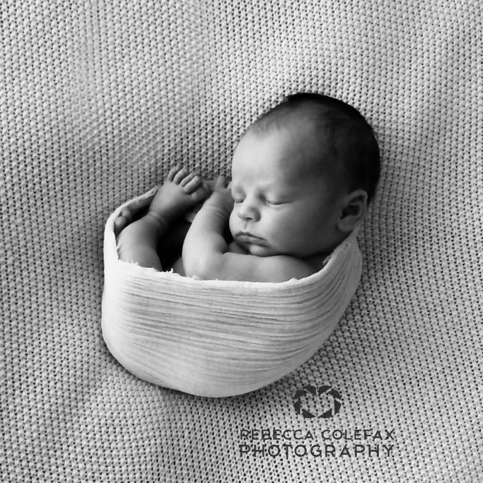 Photographer-takes-pictures-of-babies-as-never-seen-before-5922b2b9cbf08__880-w700