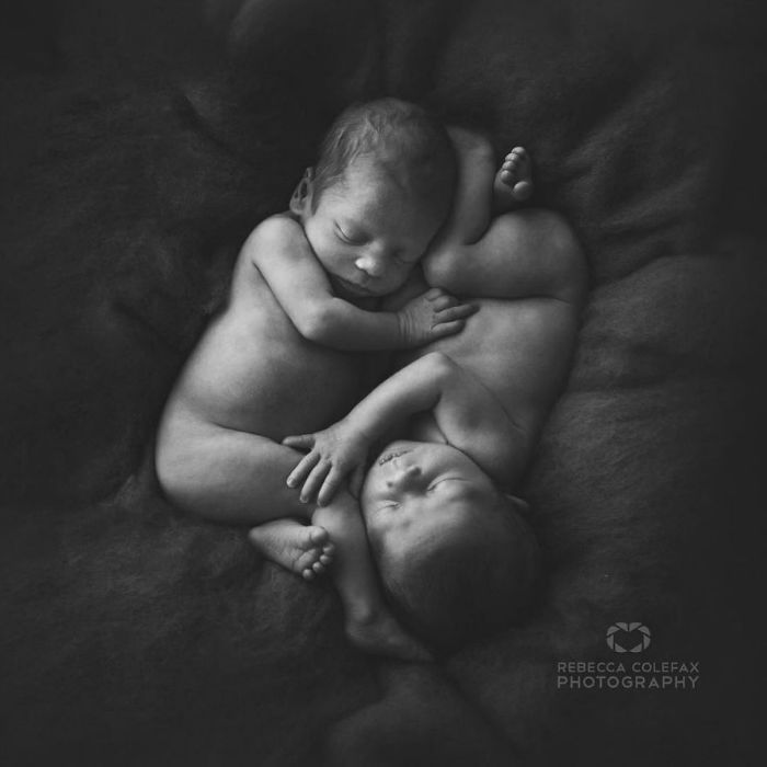 Photographer-takes-pictures-of-babies-as-never-seen-before-5922b2c56ed7a__880-w700