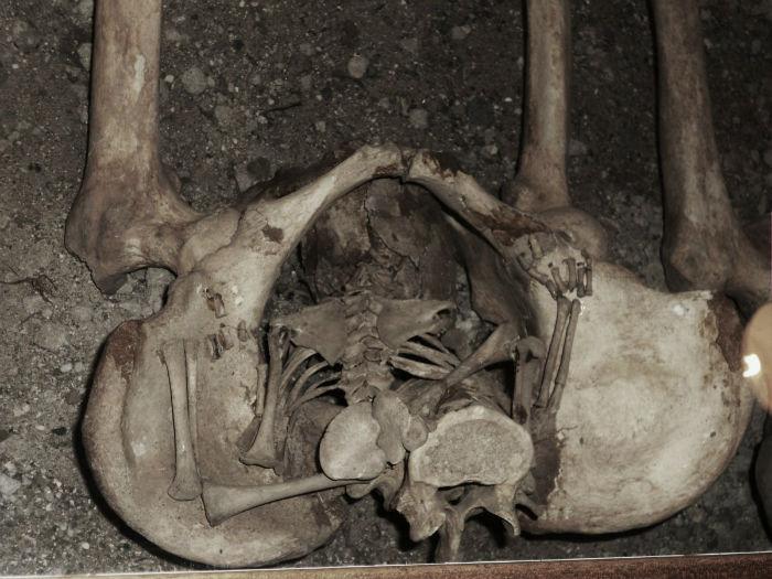 coffin-birth-w700