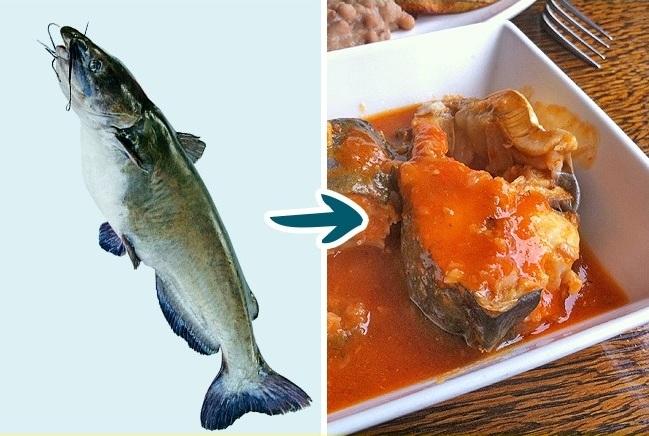 گربه ماهی این ویژگی را دارد که می تواند تا اندازه زیادی رشد کرده و بزرگ شود. همین امر باعث شده تا پرورش دهنده های ماهی، آن ها را با هورمون تغذیه کنند که بدون شک برای انسان مضر است. البته این مقوله در مورد گربه ماهی های آزاد مصداق ندارد و خواص غذایی آن ها بیشتر از خطراتشان است. مصرف این ماهی به هیچ عنوان پیشنهاد نمی شود.