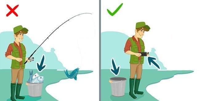 اگر خودتان ماهی گیری می کنید، پیش از هر کاری، با دستگاه جیوه سنج، آب را بررسی کرده و از میزان جیوه موجود در آن مطلع شوید.
