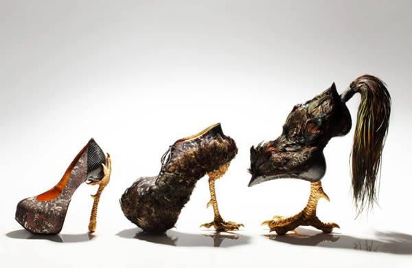اگر تاکنون فکر می کردید که کفش های کفتری بسیار عجیب هستند، احتمالا با دیدن این عکس نظرتان عوض شده. «ماسایا کوشینو»، طراحی ژاپنی است که همیشه برای طرح های فراواقعی و عجیب و غریب خود شناخته می شود. کفش هایی که این هنرمند طراحی می نماید، تلفیقی از مجسمه و پاپوش هستند که عموما از طیور و ماکیان الهام گرفته شده اند. وی بیان داشته که ایده اولیه کارهایش را از نقاش مشهور دهه 18 میلادی به نام Jakuchu Ito الهام گرفته است. وی در جدیدترین طراحی خود، خروس را به عنوان منبع ایده هایش در تولید کفش های پاشنه بلند و پوشیده از پر الهام گرفته که برخلاف ظاهرشان، قابل پوشیدن هستند و می توان با آن ها راه رفت.
