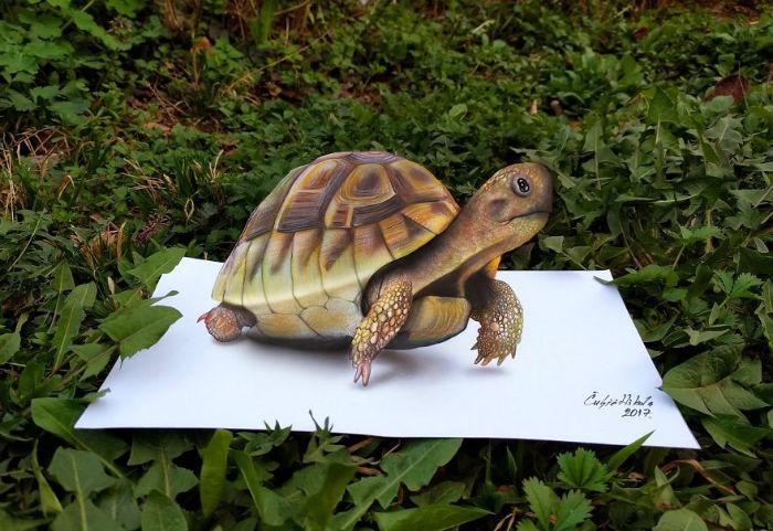 Amazing-3D-artworks-by-Serbian-Artist-Nikola-Culjic-59438149efbd0__880-w700