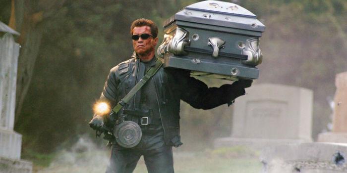 Arnold-Schwarzenegger-Terminator-3-w700