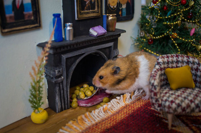 Crafted-miniature-town-for-HUNGRY-HUNGRY-HAMSTERS-online-series-5935d4d50373c__880-w700