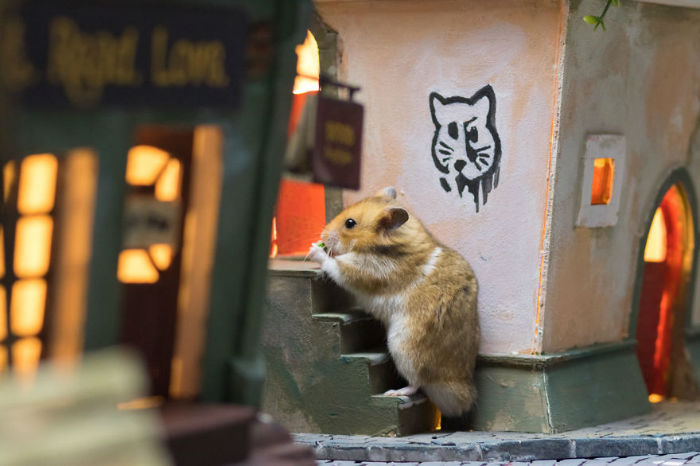 Crafted-miniature-town-for-HUNGRY-HUNGRY-HAMSTERS-online-series-5935d4fee0a68__880-w700