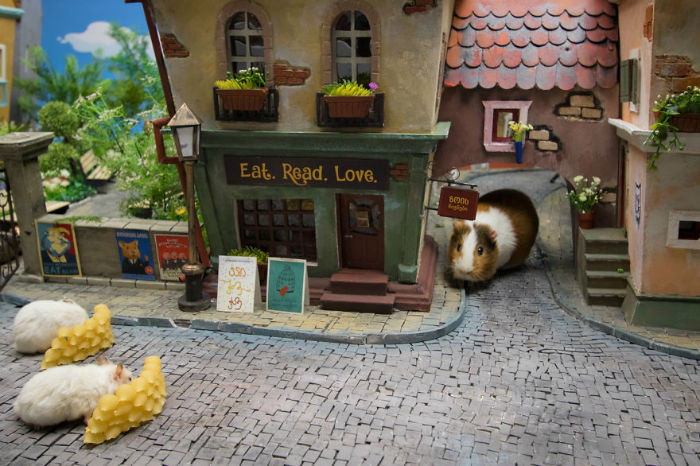 Crafted-miniature-town-for-HUNGRY-HUNGRY-HAMSTERS-online-series-5935d52dc52bc__880-w700