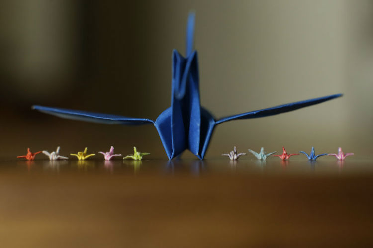 I-made-a-tiny-origami-crane-with-just-my-fingers-and-the-internet-loved-it-594c389b7ed3d__880-w750