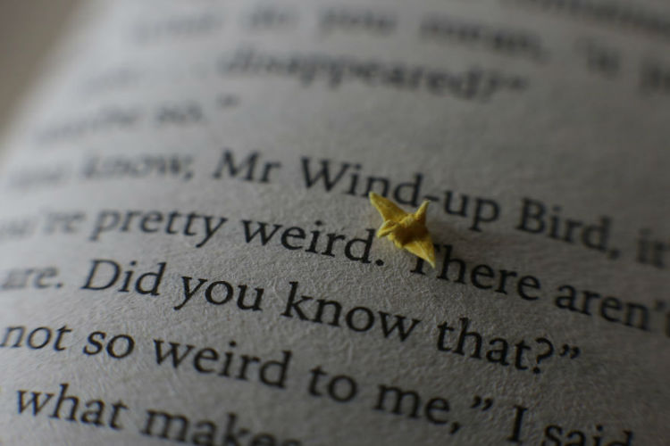 I-made-a-tiny-origami-crane-with-just-my-fingers-and-the-internet-loved-it-594c38aea7d3c__880-w750