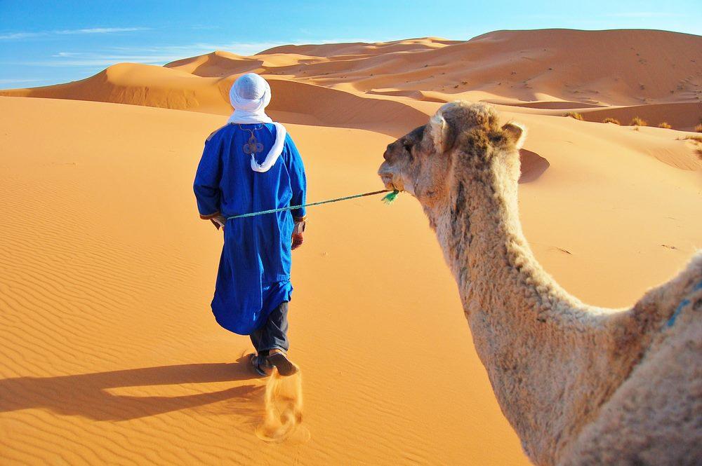 راهنمای سفر به مراکش؛ سرزمین تضادهای رنگارنگ