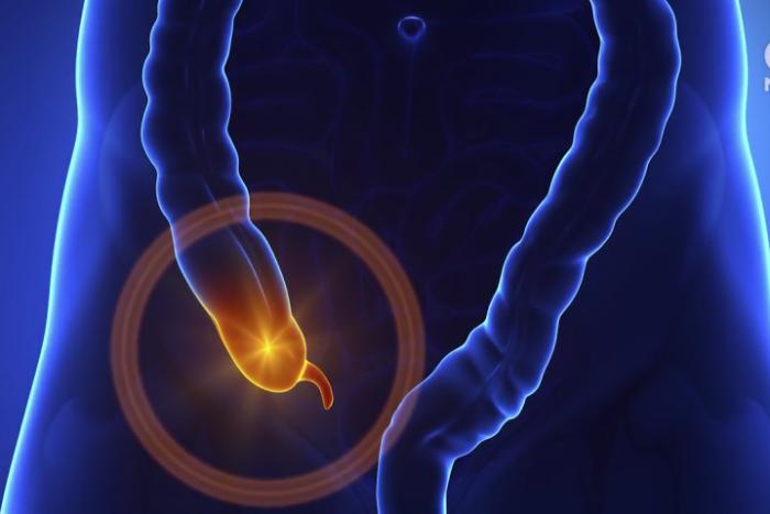 appendix-w700