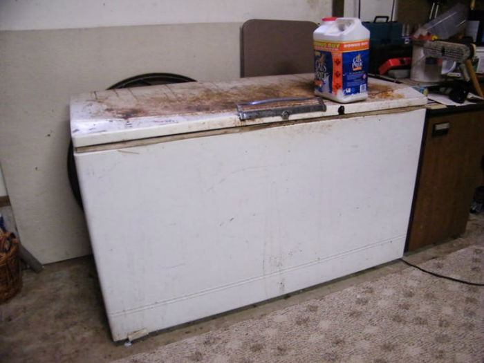 Freezer-ColdSpot1953-w700
