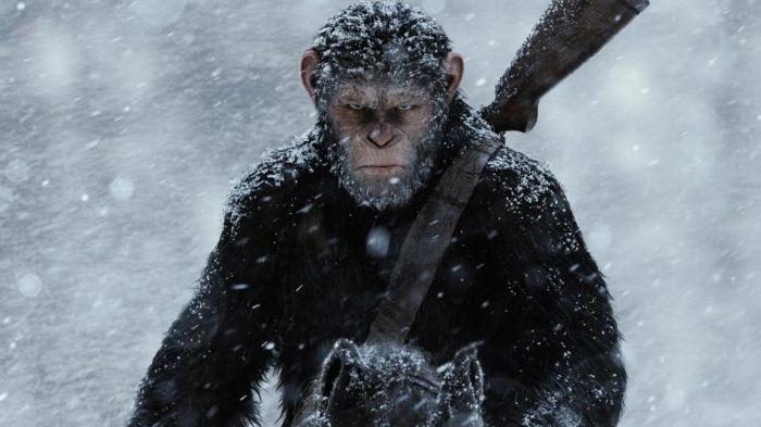 apes-1_1-w700
