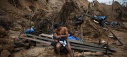 تبِ جستجوی طلا در آمازون جنگل های بارانی پرو را به سمت نابودی می برد