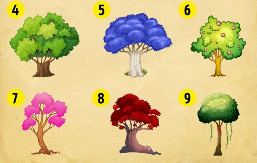 تست شخصیت شناسی با انتخاب یک درخت