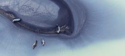 آموزش عکاسی هوایی؛ با کمک پهپاد