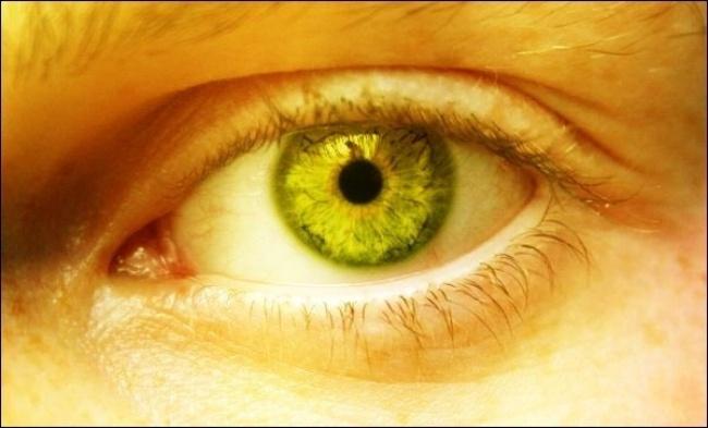 8 نشانه هشداردهنده که از سمی بودن «کبد» حکایت دارند