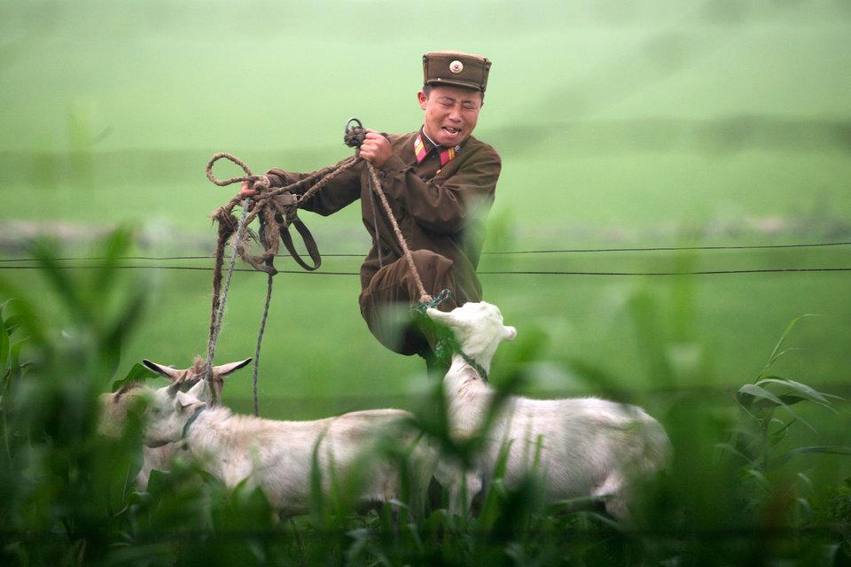 11 6 روزیاتو: ۲۱ عکس از کرهشمالی که کیمجونگاون دوست ندارد دنیا آنها را ببیند اخبار IT