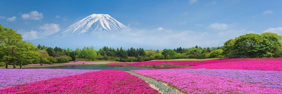 کوه فوجی ژاپن