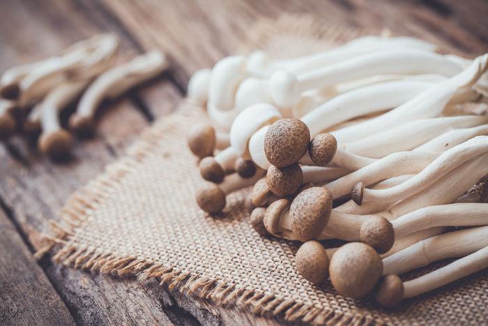 قارچ؛ سوپرغذایی سرشار از آنتی اکسیدانهای حیاتی که از پیری ممانعت خواهند کرد
