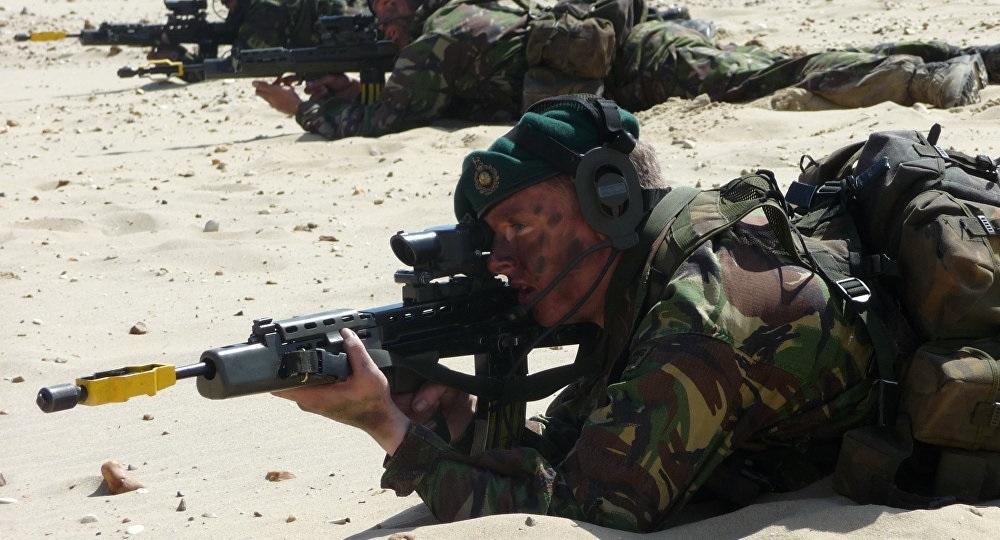 از خوردن مار و ملخ تا تمرینات طاقت فرسا با تکاوران ارتش - روزیاتو