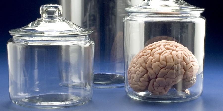 از مغز تا چمن؛ نگاهی به عجیب ترین سرقت های انجام شده