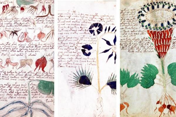 2 57 روزیاتو: ۱۰ راز سر به مهر دنیای باستان که دانشمندان از توضیح آن عاجزند اخبار IT
