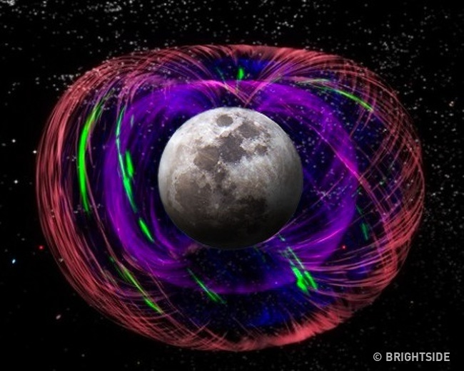 5 23 روزیاتو: ۹ واقعیت جالب در مورد کره زمین که شاید نمیدانستید اخبار IT