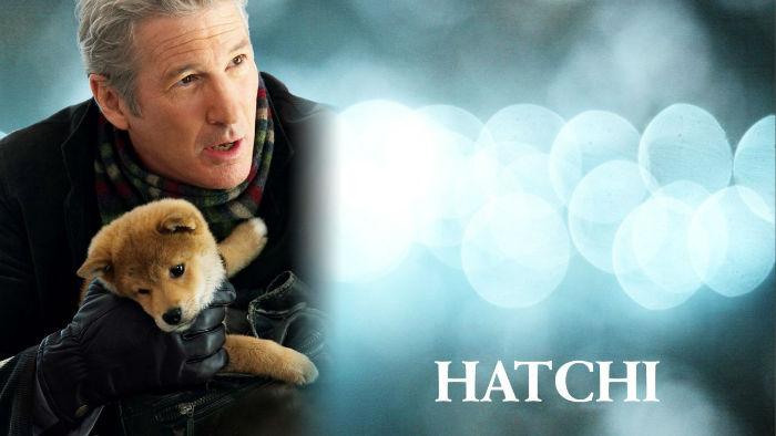 داستان باورنکردنی و غم انگیز هاچیکو؛ وفادارترین سگ دنیا که به نماد ملی ژاپن تبدیل شد