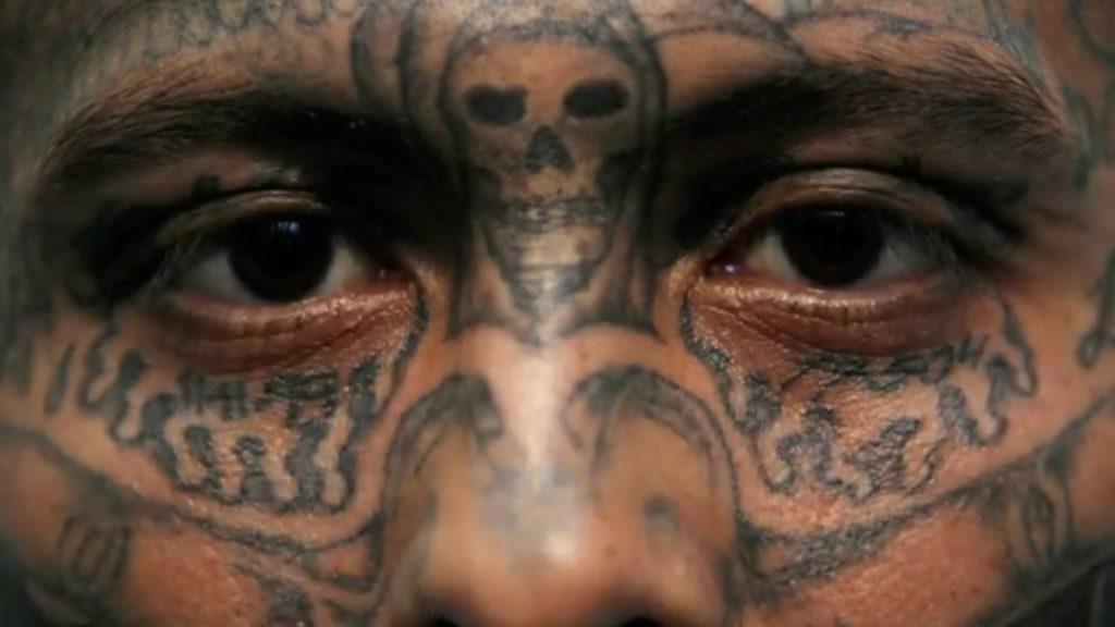 با انواع مواد مخدر و روشهای خلاقانه قاچاقچیان آشنا شوید
