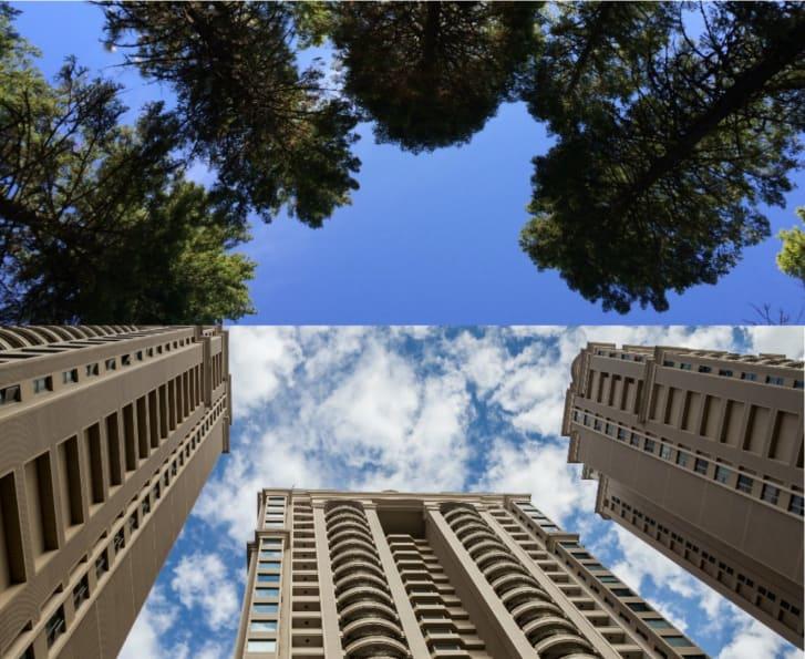 آیا میدانید نگاه کردن به ساختمانهای بلند چه عوارضی بدنبال دارد؟